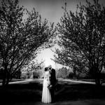 Fotograf Bottrop Hochzeitsfotograf Brautpaar Baum